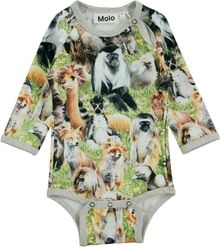 Molo kids - Field body, hairy animals