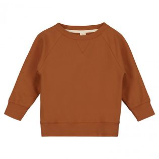 Gray label- Crew neck sweater, red earth