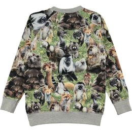 Molo kids - Romeo LS shirt, hairy animals