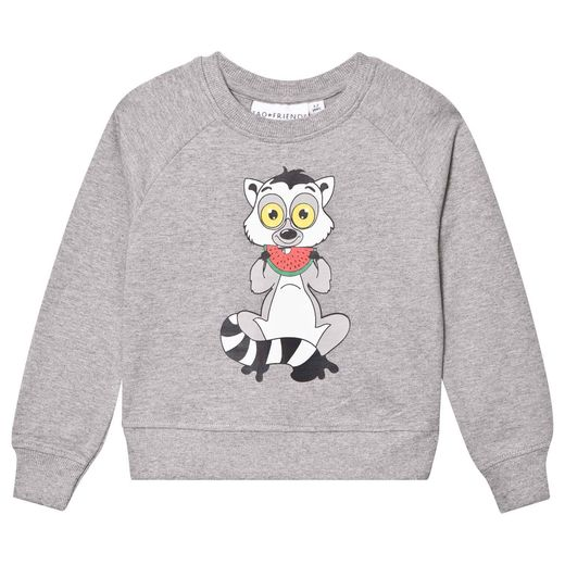 Tao and friends - Lemuren sweatshirt, grey
